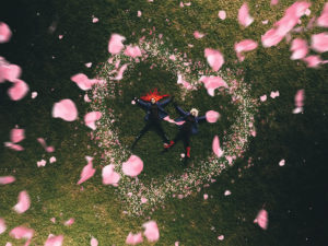 MonaLisa Twins lying on a grass field with pink rose flower petals falling down on them in the shape of a heart